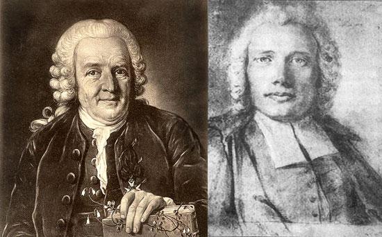 Carl von Linné ja Pehr Osbeck